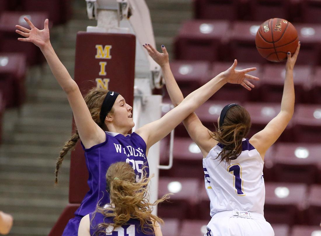 Goodhue vs. Sacred Heart State Girls Basketball 03