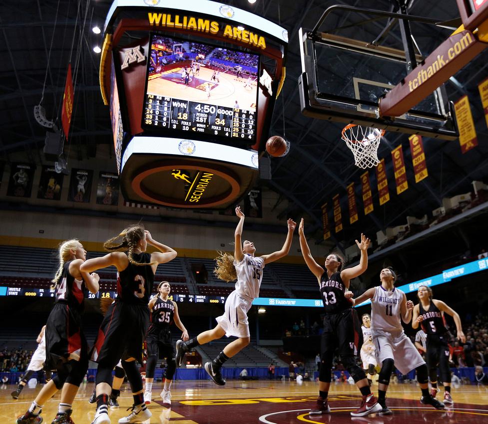 Goodhue vs. W/H-N State Girls Basketball 04